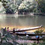 Malaisie Taman Negara (©happytellus.com)