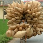 Vietnam transport (©linternaute.com)