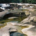 Malaisie parc d'endau (©routard.com)