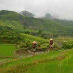 Vietnam (©samsara-voyages.com)