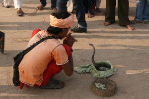 Charmeur de serpents