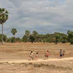 Gamins dans les champs