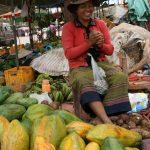 Vendeuse de papayes