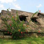 Notre hutte