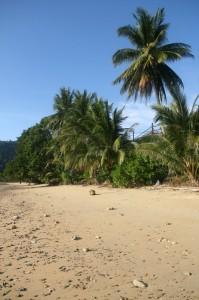 Plage de Pulau Tioman