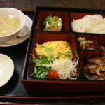 Gyozas, omelette, tofu