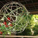 Ikebana ou l'art de la décoration florale
