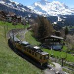 Train pour Wengen