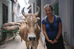 Choupi et la vache