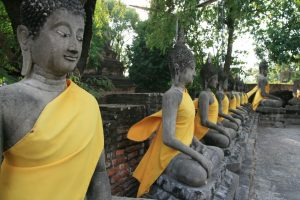 Buddhas sur leur 31