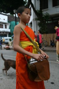 Petit moine en devenir