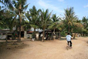 Campagne de Kampot