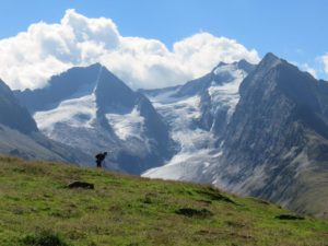 Vue sur les glaciers