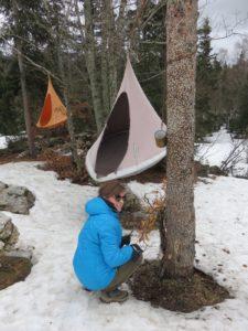 Sièges suspendus dans la forêt